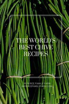 your garden loaded with chives this season If so, it might be time to consider some of these top chive recipes. Your taste buds will thank you! Herb Recipes, Vegetable Recipes, Cooking Recipes, Healthy Recipes, Recipes With Chives, Fruits And Veggies, Vegetables, Onion Pie, Lime Cream