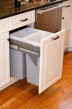 This hidden trash and recycling drawer beside the dishwasher and sink area would be handy.