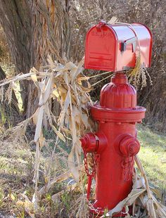 Fire Hydrant Mailbox by Sandy*S, via Flickr