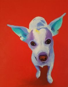 Duck the dog by Casey page Amazing Art, Awesome, Collage Ideas, Horse Art, Dog Portraits, Red Background, Animal Paintings, Dog Art, Dog Life