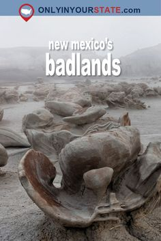 Travel | New Mexico | Attractions | Activities | Sites | Explore | Local Finds | Bisti Badlands | Outdoor | Scenery