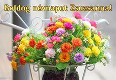 Boldog névnapot Zsuzsanna! - Megaport Media Share Pictures, Animated Gifs, Name Day, Floral Wreath, Wreaths, Halloween, Birthday, Plants, Diy
