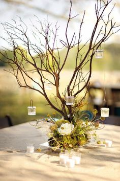 Having a fabulous celebration in a well-dressed venue? No need to blow the bank on overthetop centerpieces.... taylor this simple but elegant pairing of branches and hanging votives with your colorscheme and create more wow for less $$ xoxo (p.s. - we'd just love to help you out with even more ideas! facebook.com/pumpkinleeprints)