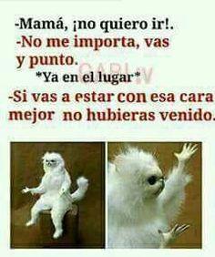New memes en espanol chistosos ideas Mexican Funny Memes, Funny Spanish Memes, Spanish Humor, Funny Relatable Memes, Funny Jokes, Mom Funny, Memes Humor, New Memes, Chat Facebook