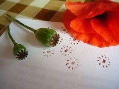 stamping with a poppy