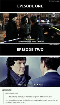 BBC Sherlock Memes - Vom Kollegen zum Freund - Johnlock - You are in the right place about animal Memes Here we offer you the most beautiful pictures about the Sherlock Fandom, Sherlock John, Sherlock Quotes, Watson Sherlock, Jim Moriarty, Sherlock Holmes Bbc, Sherlock Bbc Funny, Sherlock Season 1, Sherlock Tumblr