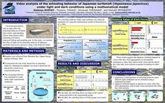 Image result for best scientific posters