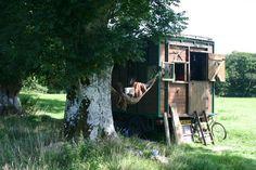 bedford & hammock in devon field 3small