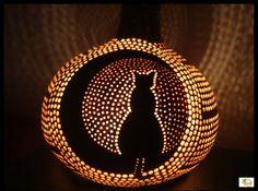 Gece ve Kedi - Daha fazlası ve iletişim için www.facebook.com/IsikEvi
