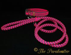 Adjustable Paracord Dog Collar with matching Leash is also going to Săo Paulo - Brazil. #Paraknotter #Handmade #Paracord #Paracord550 #dogcollar #dogcollars #paracorddogcollar #paracorddogcollars #paracordbracelets #leash #paracordleash #Dogs #paracordismylife #paracordLove #Paracordart #knots #honden #halsbanden #hondenriemen #halsband #paracordmania #k9 #dogstuff #theparaknotter