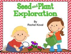 UPDATED 2015 Your scientists will enjoy discovering and learning about seeds and plants with this 40 page product!
