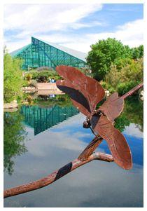 Albuquerque botanic garden the children 39 s fantasy garden for Aquarium botanic