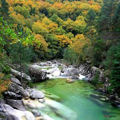 I Like It Nice And Natural...Always At Geres National Park,In My Country Portugal ... http://samissomarspace.wordpress.com