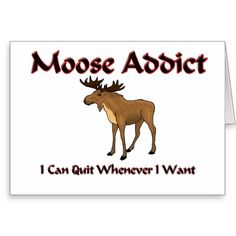 Moose Addict Greeting Card