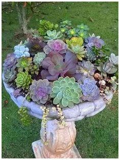 15 Most Beautiful Container Gardening Flowers Ideas For Your Home Front Porch - Diy Garden Decor İdeas Garden Types, Diy Garden, Garden Care, Garden Projects, Recycled Garden, Shade Garden, Summer Garden, Diy Projects, Garden Beds