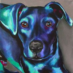12x12 Black labrador retriever acrylic pop art. I used an aqua green for the highlights and blues, blacks and purples for the shadows with a touch of fuchsia.