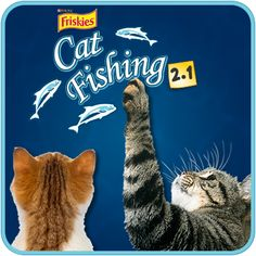 1000 images about friskies games for cats on pinterest for Fish game for cats