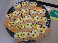 treats for owl pellet finale