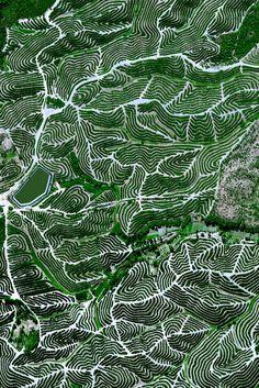 Фруктовые деревья циркулировать на холмах Уэльва, Испания