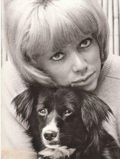 Mireille Darc et son chien - Les stars et leurs animaux de ...