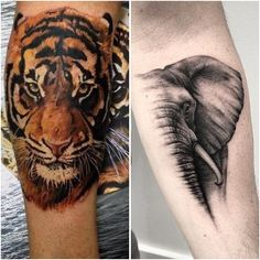 Realistic wild animal tattoos on the fore arm.