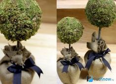 Topiary diy moss topiaries for the mantle :: switch out the ribbon for different holidays/events? Save On Crafts, Diy And Crafts, Feather Centerpieces, Topiary Centerpieces, Deco Nature, Topiary Trees, Topiary Decor, Different Holidays, Giant Paper Flowers