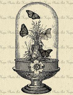 Butterfly Atrium 85x11 Image Transfer  Burlap Feed by HopePhotoArt, $1.25