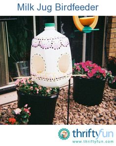 This is a guide about making a milk jug bird feeder. Recycle your gallon milk jugs into useful, fun, bird feeders.