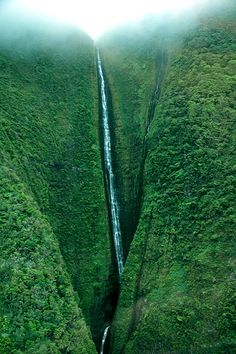 Papalaua Falls, Molokai, Hawaii. #waterfall #molokai #hawaii.  Been to Maui & Oahu - 15 years ago. Want to experience other places in Hawaii