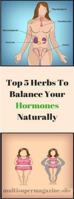 Top 6 Herbs To Balance Your Hormones Naturally – Multi Super Magazine