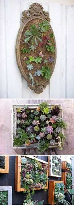 Vertical gardening idea. Plus, you can install a shelf under the kitchen window, and grow small pots of kitchen herbs right where you can get to them!