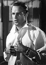 marlon brando as stanley kowalski in a streetcar named desire (1951)