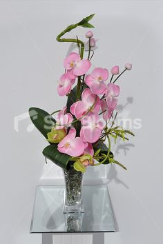 Lavish Pink & Green Orchid Vase Arrangement with Bamboo Shoots