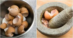 The next time you eat eggs, you might want to hang on to the shell. Here's four reasons why you should be eating the shells and not wasting any part of this wonderful marvel of mother nature. Source De Calcium, Home Health Care, Good Foods To Eat, Natural Home Remedies, Egg Shells, Best Diets, Omega 3, Minion, Diet Recipes