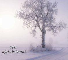 . Wise Words, Lyrics, Deep, Feelings, Nature, Life, Outdoor, Outdoors, Naturaleza