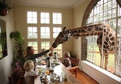 Giraffe Manor, Kenya - Is this place for real??? I TOTALLY wanna go to a place where a giraffe can stick its head in the window and share breakfast with me! <3