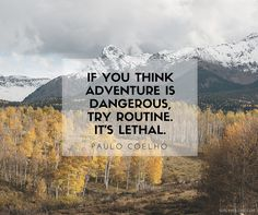 Beautiful travel quotes: if you think adventure is dangerous try routine it's lethal - paulo coelho Know some one looking for a recruiter we can help and we'll reward you travel to anywhere in the world. Email me, carlos@recruitingforgood.com