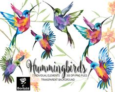 This item is unavailable Watercolor Hummingbird, Watercolor Bird, Hummingbird Tattoo, Watercolor Paintings, Line Art Flowers, Flower Art, Graduation Invitations, Wedding Invitations, Colorful Birds