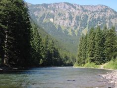 watching for fish on the gallatin river big sky montana oh how i
