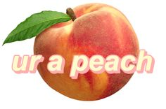 you could be the sweetest peach in the world and there's always gonna be someone who hates peaches
