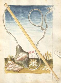 Bellifortis VerfasserKyeser, Conradus  ErschienenElsaß, [um 1460] Ms. germ. qu. 15  Folio 99r
