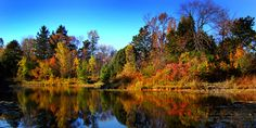 Schlitz Audubon Nature Center (185 acres of natural habitat, attractions include 6 miles of hiking trails and a 60-foot observation tower) - 1111 E Brown Deer Rd, Milwaukee, WI 53217 #Wisconsin #thingstodo