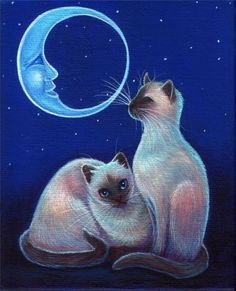 Cat Art... =^. ^=... ❤... Siamese  Night Moon Cats... By Artist Unknown...