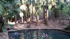 Mataranka Thermal Pools, NT, Australia