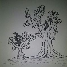 Drawing of trees...