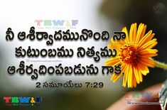 Telugu Church is the place where people meet to praise the Jesus with kind heart and offer services to the poor people. It provides services like best church in Hyderabad,Each and every Church detail's in Hyderabad. Bible Quotes Images, Bible Qoutes, Bible Words, Jesus Wallpaper, Bible Verse Wallpaper, Wallpaper Quotes, Jesus Christ Quotes, Bible Verses About Faith, Christian Wallpaper