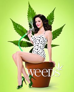 Weeds, a suburbian housewife, that finds herself in the world of dealers and crime. Very very funny. Love it since years.
