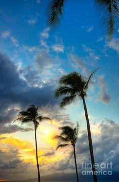 ✯ Kapalua Palms - Maui