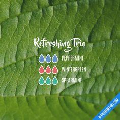 Refreshing Trio - Essential Oil Diffuser Blend