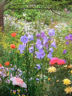 Tasha Tudor garden, just like an English cottage garden